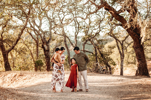 lifestyle family photographer serving northern california, diana jex photography