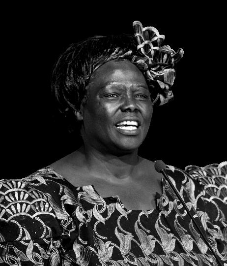 Wangari-Maathai-2009-removebg-preview_ed