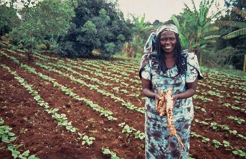 kenyan-activist-wangari-maathai-52519431