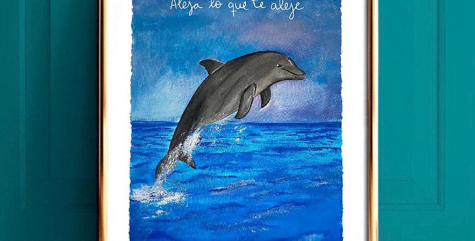 Lámina Delfín
