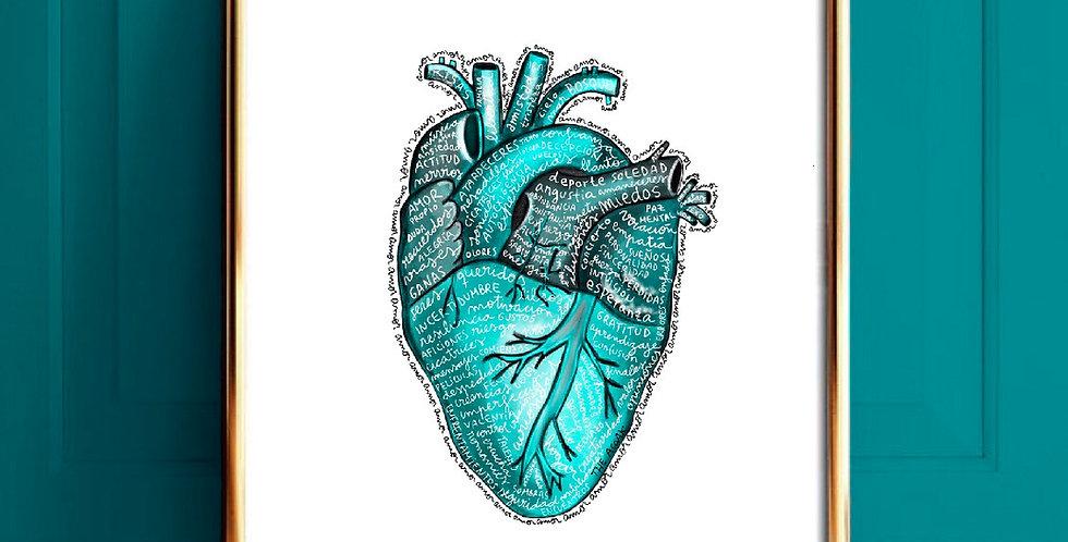 Lámina Heart