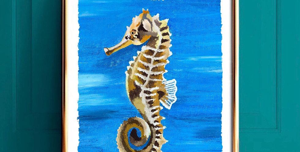 Lámina caballito de mar