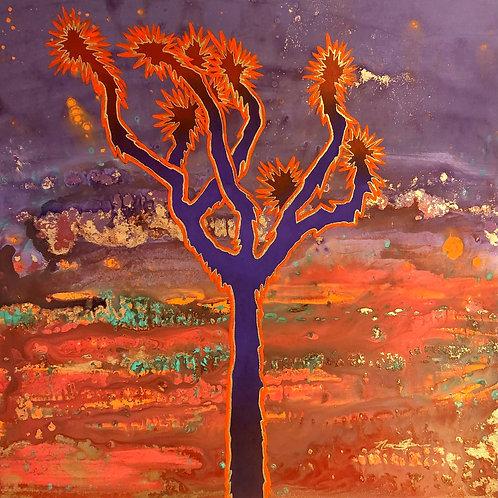 Burning Joshua Tree