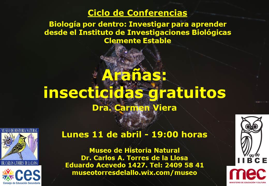 Arañas_IIBCE