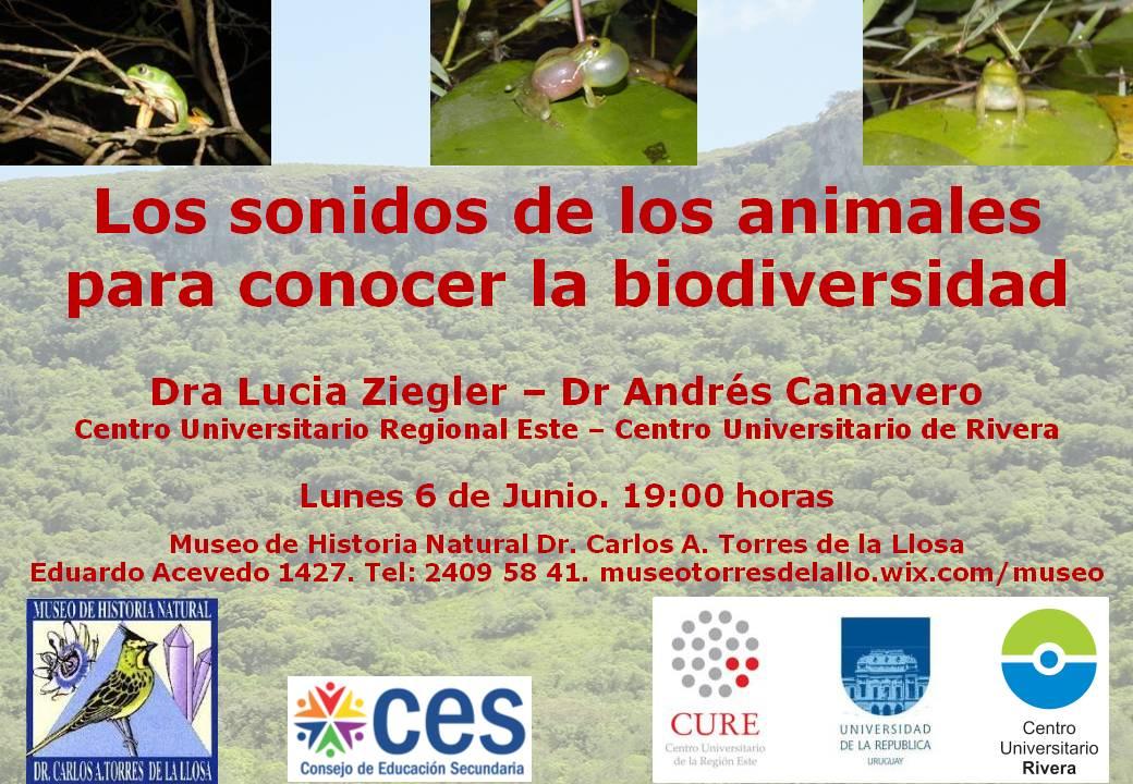 Sonidos - Biodiversidad