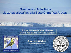 Crustáceos_Antárticos_Waller