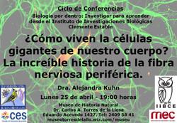 Neuro IIBCE