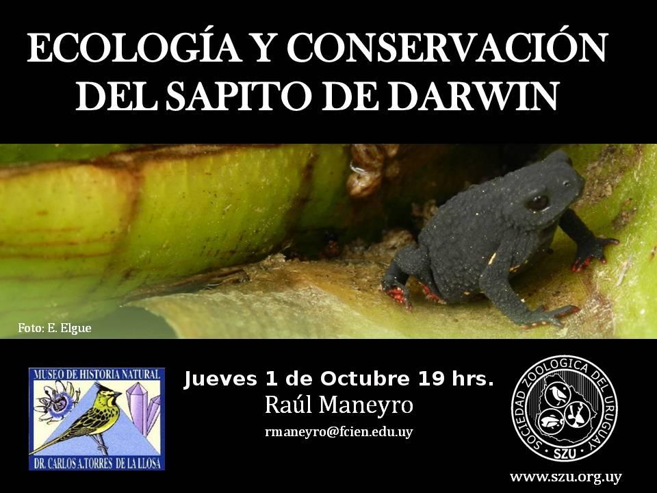 Presentacion Sapito de Darwin