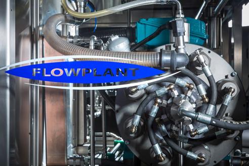 Flowplant Detail