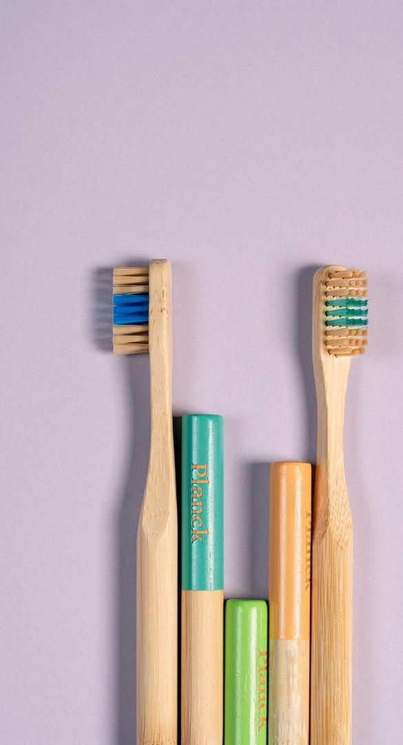 Escovas-de-Bambu-Planck-650x1200.jpg