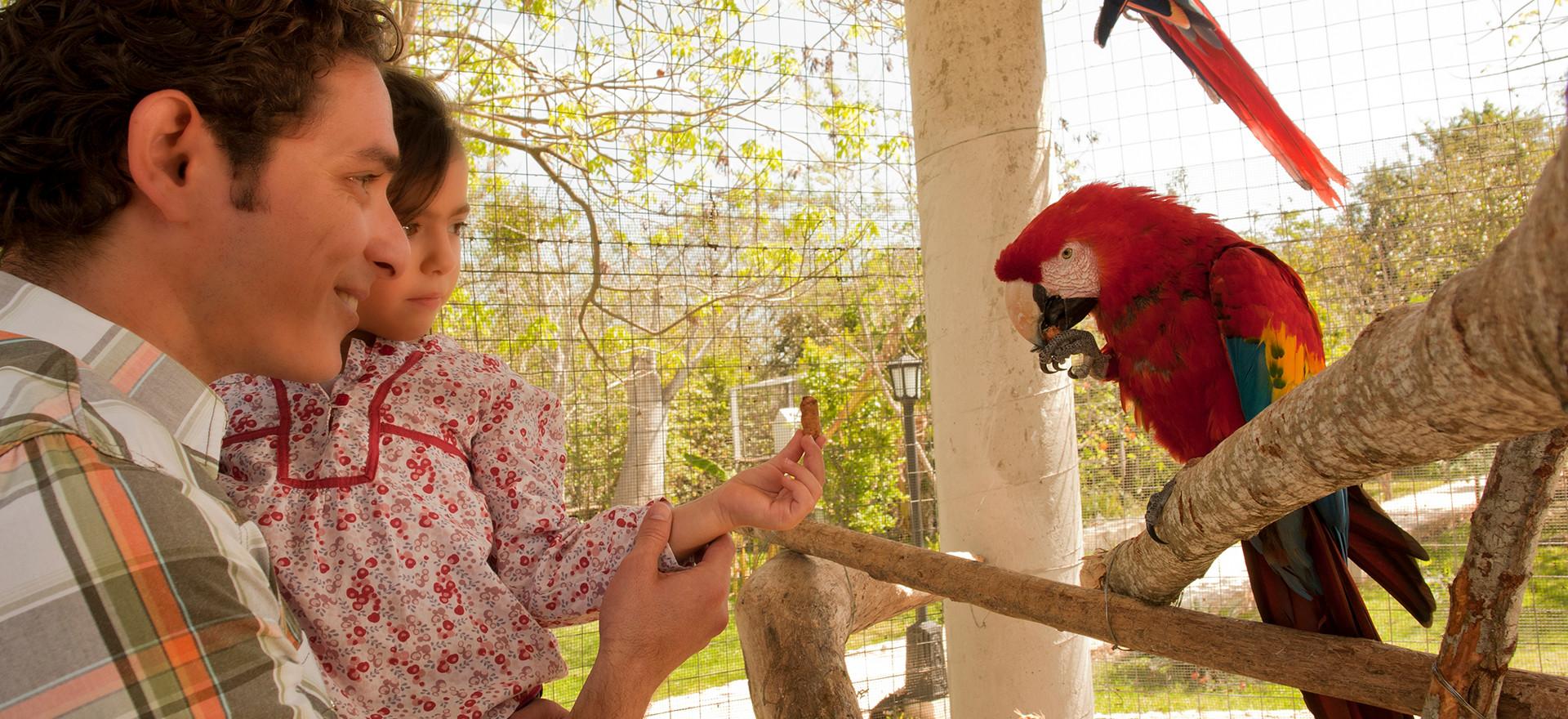 Hacienda Santuario Noc ac Guacamayas.jpg