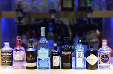 gin-2-500.jpg