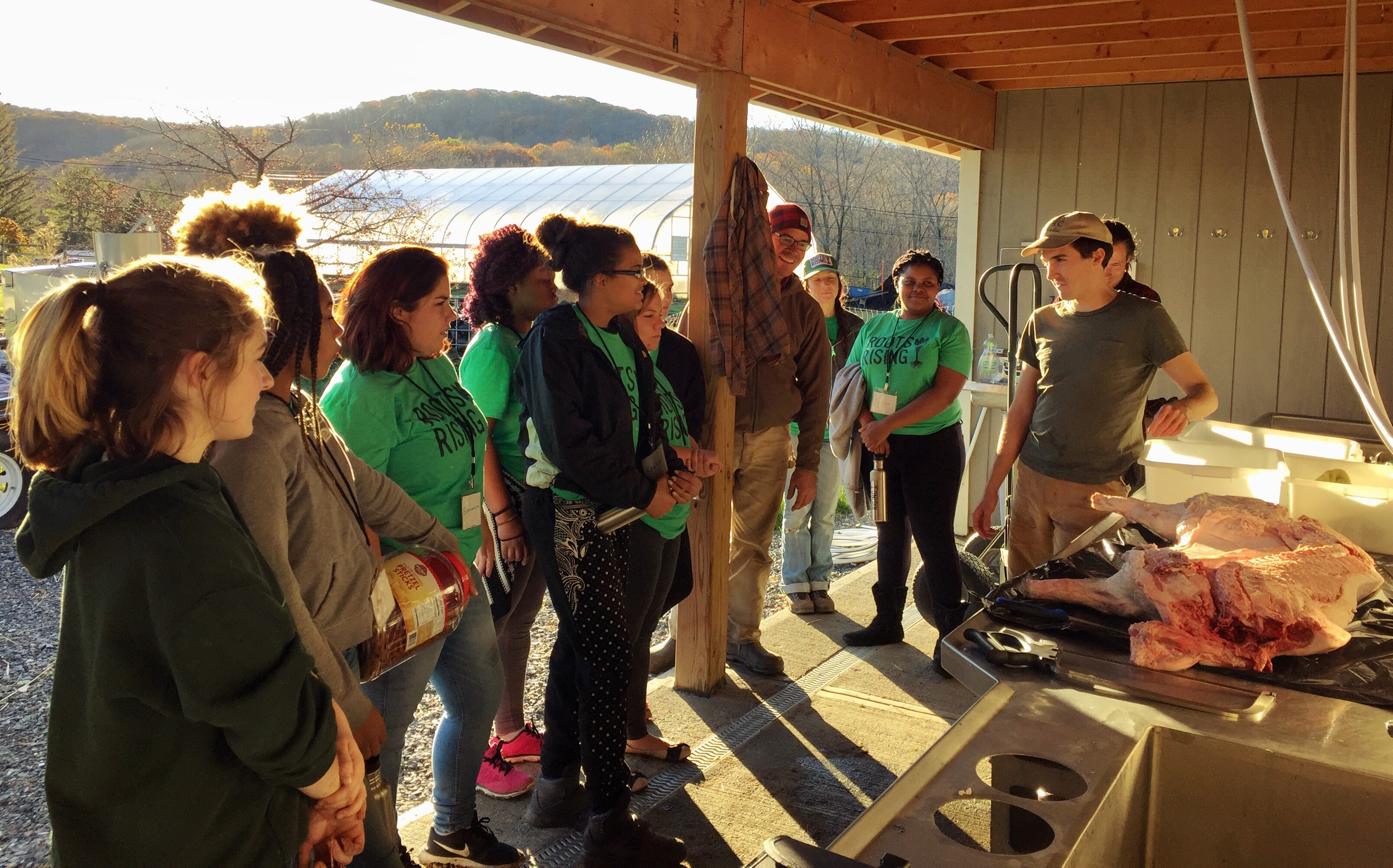 The Crew learns about pig butchery.