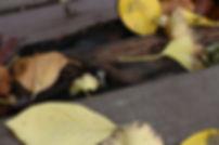 사진5 지난11일 촬영한 농구코트 모습. 보호 매트가 바닥에 방치되고 있
