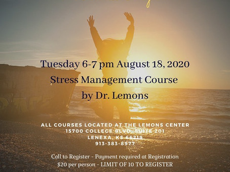 Introducing a Wellness Program by The Lemons Center