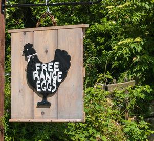 Free Range Eggs..jpg