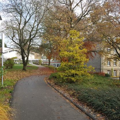 SJG Biesdorf Gymnasium Eifel Schule (2)