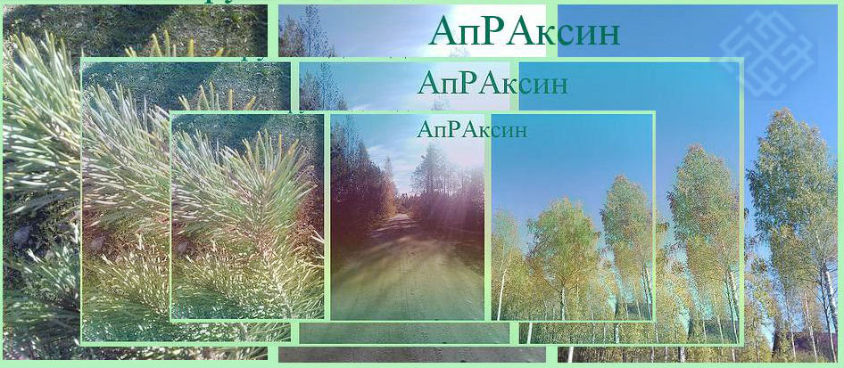 Форум садоводов массива Апраксин