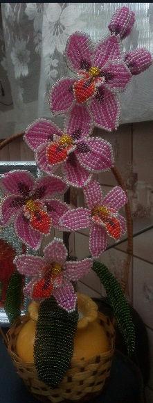 Красная орхидея из бисера ветка орхидеи в вазе купить красивые цветы из бисера