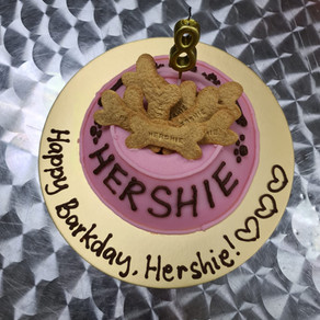 ❤️ HAPPY BIRTHDAY HERSHIE ❤️