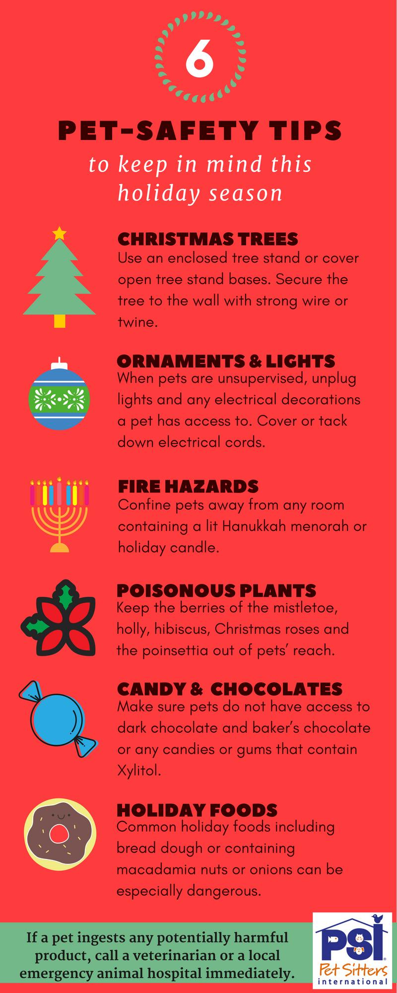 Pet Safety Holiday Season