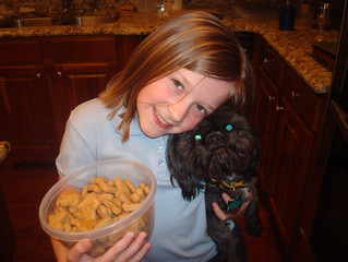 Homemade Dog Treats for the Holidays!!