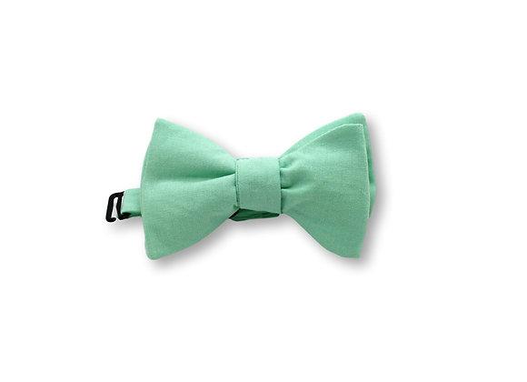 Noeud papillon vert d'eau