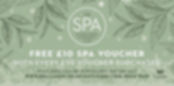 spa-lamon-offer.png