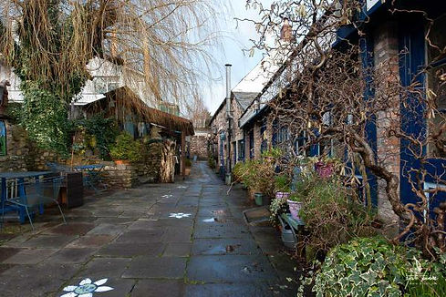Winter courtyard - paving stones after rain. Shops right and bare willow branches hanging on left.