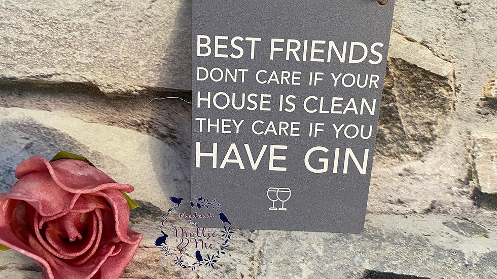 Best friends don't care if your house is clean they care if you have Gin