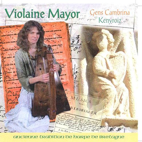 Violaine Mayor - Gens Cambrina