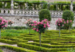 Gardens near Guenand