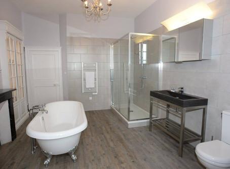Renovating the Bathroom (Chevalier)