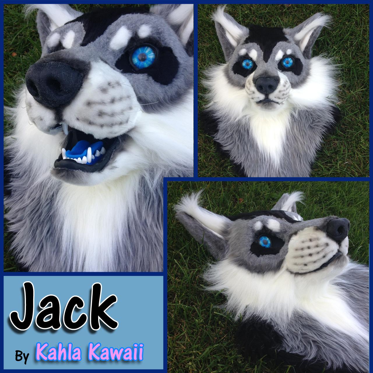 Jack Wolf Head