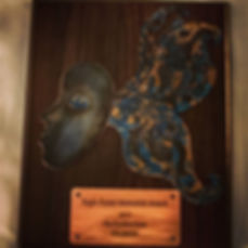 Plaque and one of the pins I created thi