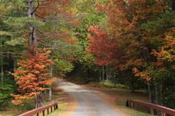 Adirondacks in the fall