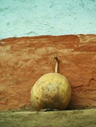 129  Pumpkin, Nepal.JPG