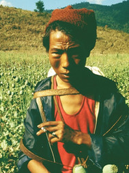 119  An Opium Harvester, Golden Triangle