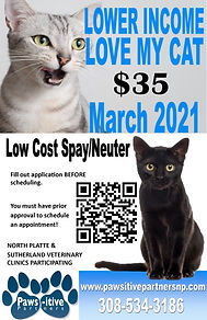 March 2021 LMC Poster.jpg
