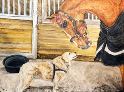A Dog and His Horse