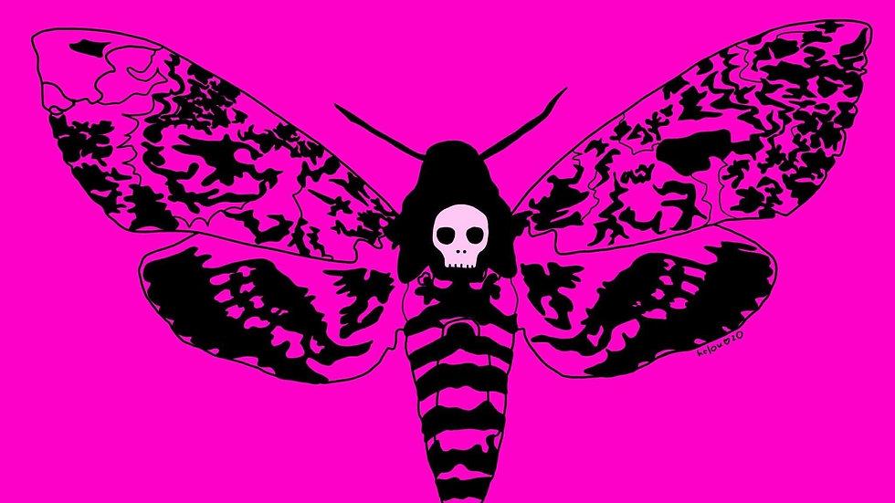 """death moth (5x7"""")"""