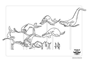 Whale Song Colouring in sheets.jpg