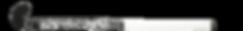 BEST FIELD HOCKEY STICK GRYPHON TABOO JPC BLACK G19 front, cushion grip
