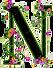 depositphotos_7733839-stock-photo-floral