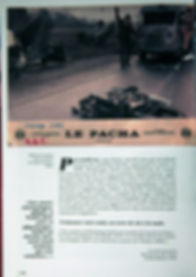 dominique zardi 5.jpg