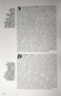 dominique zardi 3.jpg