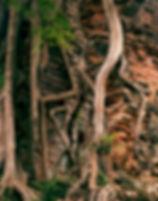 1 - Sobor Prei Kuk - PICT0067.jpg