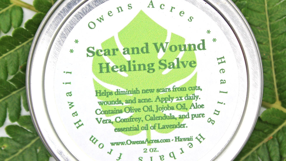 Scar and Wound Herbal Salve - Cuts, Scrapes, and Scars
