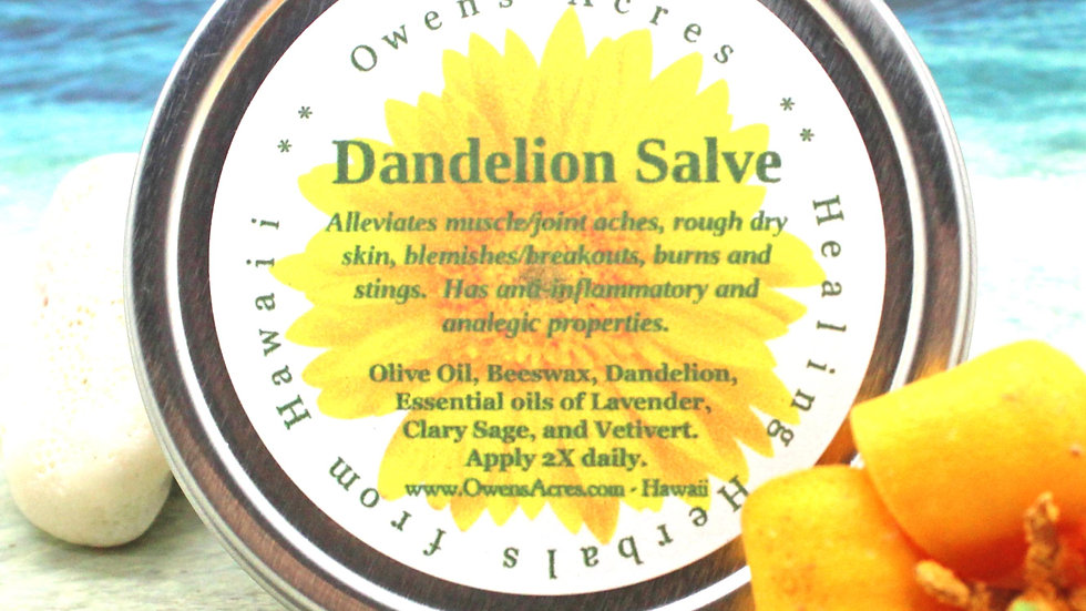DANDELION Salve / Herbal Salve / Skin Salve / Healing Salve / Natural Remedy / A