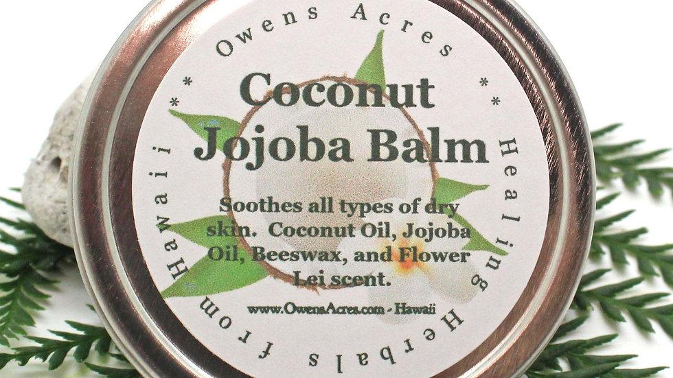 COCONUT JOJOBA Balm / Healing Salve for Dry Skin, Skin Moisturizer, Dry Skin Sal